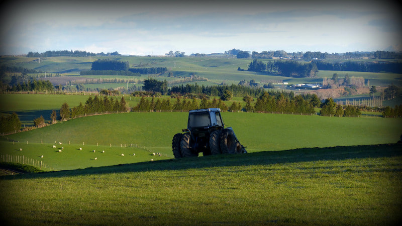 New Zealand Sheep Farm Tractor Free Literacy Training
